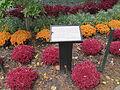 MSU 2014 Botanical Garden S.jpg