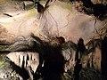 Magura cave-Пещера Магурата - panoramio (3).jpg