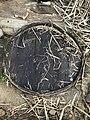 Making of brown sugar in Punjab 13.jpg