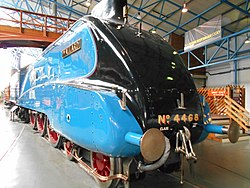 Mallard at York, Aug 17 (2).jpg