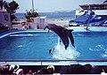 Mallorca 045.jpg