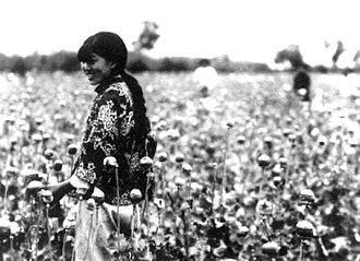 Kenji Doihara - Harvest of poppy in Manchukuo used for opium production