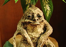 Mandragora Autumnalis Wikipedia La Enciclopedia Libre
