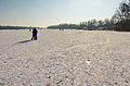 Maschsee im Winter IMG 3636.jpg