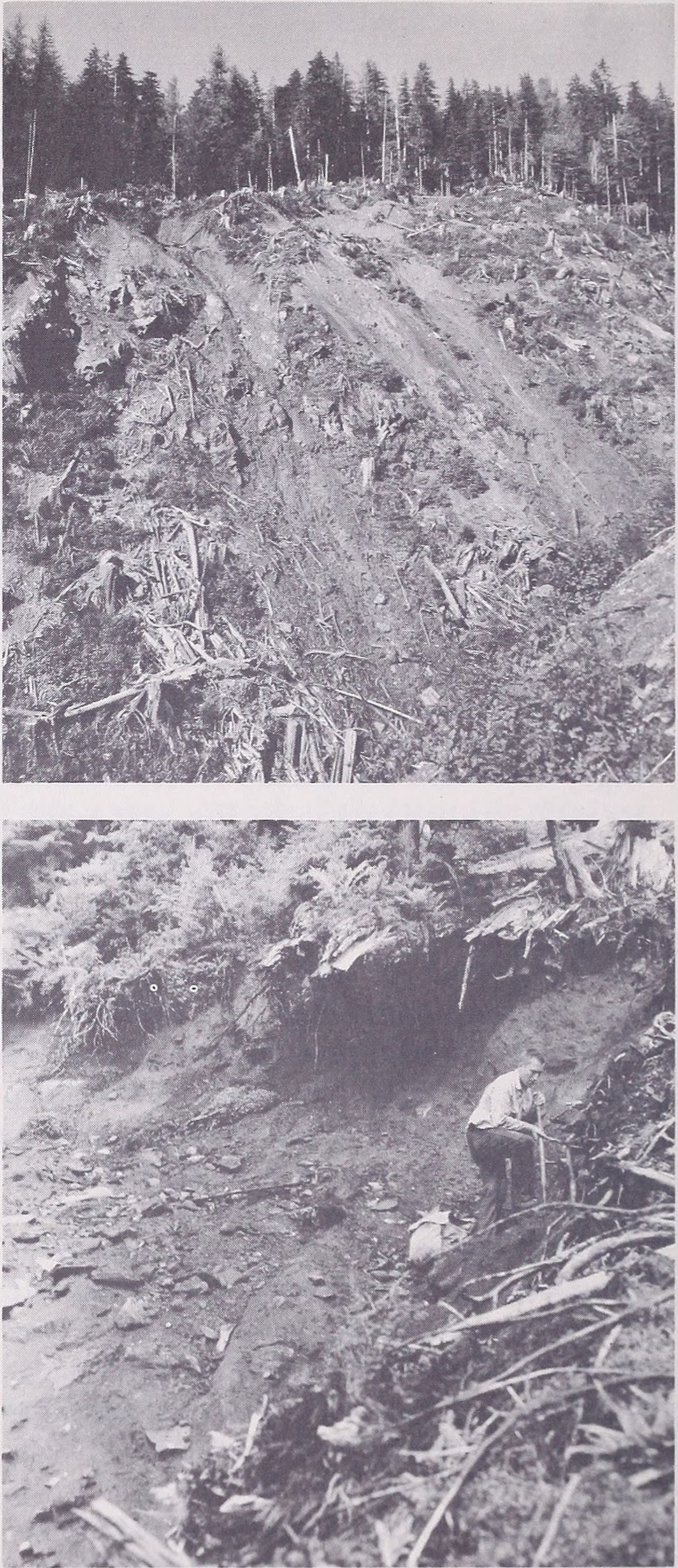 Mass wasting in coastal Alaska (1969) (20385447860)