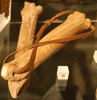 Ice skate - Medieval bone skates on display at the Museum of London.