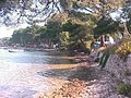 Medulin, Croatia - panoramio - Laci30 (1).jpg
