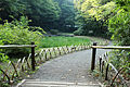 Meiji Shrine - August 2013 - Sarah Stierch - 11.jpg