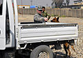 Military Working Dog Rronnie searches a vehicle.jpg