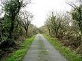 Minor road to Mynydd Nefyn - geograph.org.uk - 677299.jpg