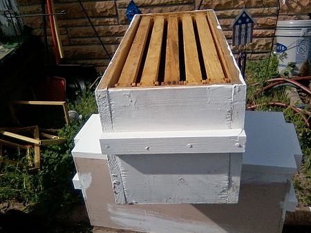 Beekeeping/Warre - Wikibooks, open books for an open world