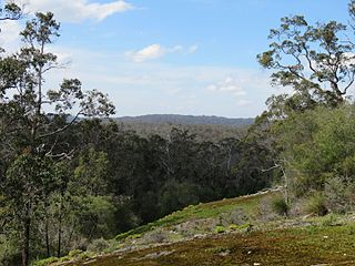 Shannon National Park Protected area in Western Australia