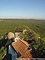 Monte de São Brás - Nazaré - Portugal (6830036881).jpg