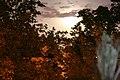 Moon Rise - panoramio.jpg