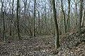 Motte op de Butsberg te Tielt-Winge - 372575 - onroerenderfgoed.jpg