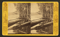 Mouth of Oklawaha River, Fla, from Robert N. Dennis collection of stereoscopic views.png