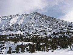 Mt Morgan.jpg