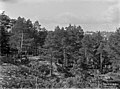 Näköala Pasilan huvila-alueelle - N665 (hkm.HKMS000005-000000v8).jpg