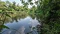 NSG Pellini-Weiher FFH-Gebiet Indemündung Uferbereich - Am Weiher X.jpg
