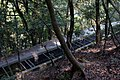 Nanzenji Aqueduct (3608800317).jpg