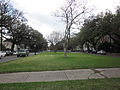 Napoleon Pitt Uptown NOLA Jan 2012 Neutral Ground Lakewards.JPG