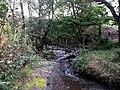 Narrows at Glenhove - geograph.org.uk - 1534726.jpg