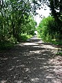 National Cycle Route 15 - geograph.org.uk - 1007734.jpg