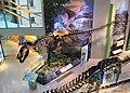 Naylor Family Dinosaur Gallery.jpg