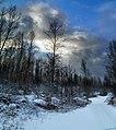 New snow - panoramio.jpg