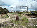 Newnes Junction station looking east.JPG