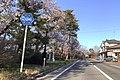 Niigata r264 002 April2020.jpg
