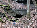 Noland Railroad Tunnel (Tunnel Hill, Coshocton County, Ohio, USA) 8 (30215735204).jpg