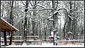 Nyíregyháza, Sóstói-erdő, Játszótér, 2013 Március 16. Behavazva - panoramio (10).jpg