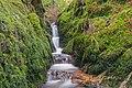 Oberried (Breisgau) - unterer Buselbach-Wasserfall II.jpg