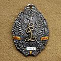 Odznaka legionu puławskiego.jpg