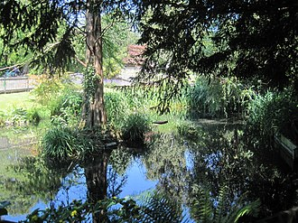 Old Court House Recreation Ground - Image: Old Court House pond