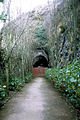 Old Jersey Railway tunnel, St Aubin, 1967 - geograph.ci - 188.jpg