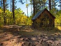 Old cabin, Marlette Lake Trail.jpg