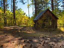 Old cabin, Marlette Lake Trail.jpg