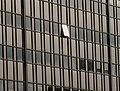 One open window - geograph.org.uk - 617528.jpg