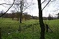 Open Parkland - geograph.org.uk - 291315.jpg
