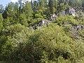 Ordzhonikidzevskiy r-n, Khakasiya Republits, Russia - panoramio (3).jpg
