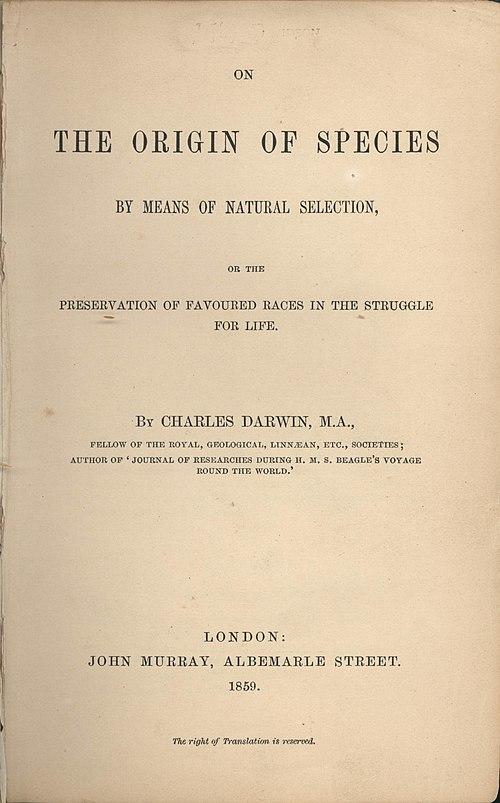 arternes oprindelse engelsk
