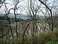 Otani Cemetery - panoramio (3).jpg