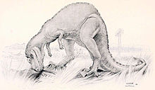 Early life reconstruction by Joseph M. Gleeson, 1901