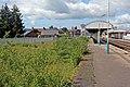 Overgrown railway yard, Gobowen railway station (geograph 4024090).jpg
