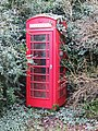 Overgrown red telephone box, Taverham - geograph.org.uk - 347144.jpg