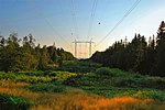 Overhead power line clearing in Sweden - grizzlybear.se 497.jpg