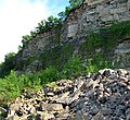 Pühajõe cliff, 2011-06.jpg