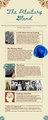 PSY1010 AspenBrown BrainInfographic.pdf